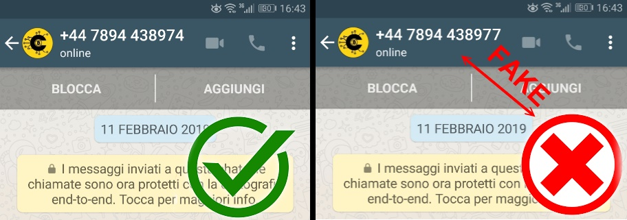 fake real whatsapp cryptolocalatm