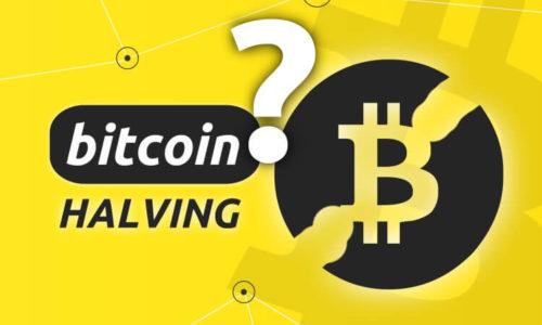 Bitcoin Halving 2020: la data più importante per il Bitcoin